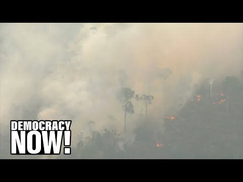 """Our House is On Fire"": Brazil Faces Global Outrage as Massive Fires Spread in Amazon Rainforest"