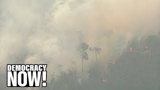 """Video """"Our House is On Fire"""": Brazil Faces Global Outrage as Massive Fires Spread in Amazon Rainforest download MP3, 3GP, MP4, WEBM, AVI, FLV Agustus 2019"""
