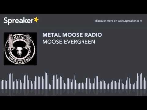 MOOSE EVERGREEN (made with Spreaker)