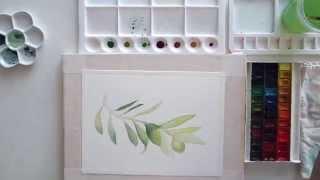 Коммерческая иллюстрация - Зелень