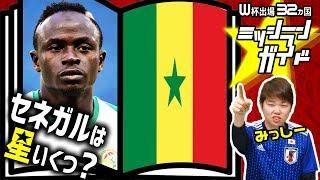 【ロシアW杯】セネガル代表を格付け!【出場32カ国ミッシランガイド 30/32】