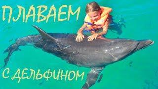 Ксюша плавает с дельфинами 🐋 Дельфинарий 🐳 Шоу Дельфинов 🐬 Видео для детей!