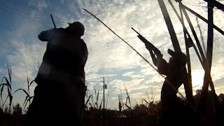Matanzas Spearfishing Co., 2014 Dove Hunt