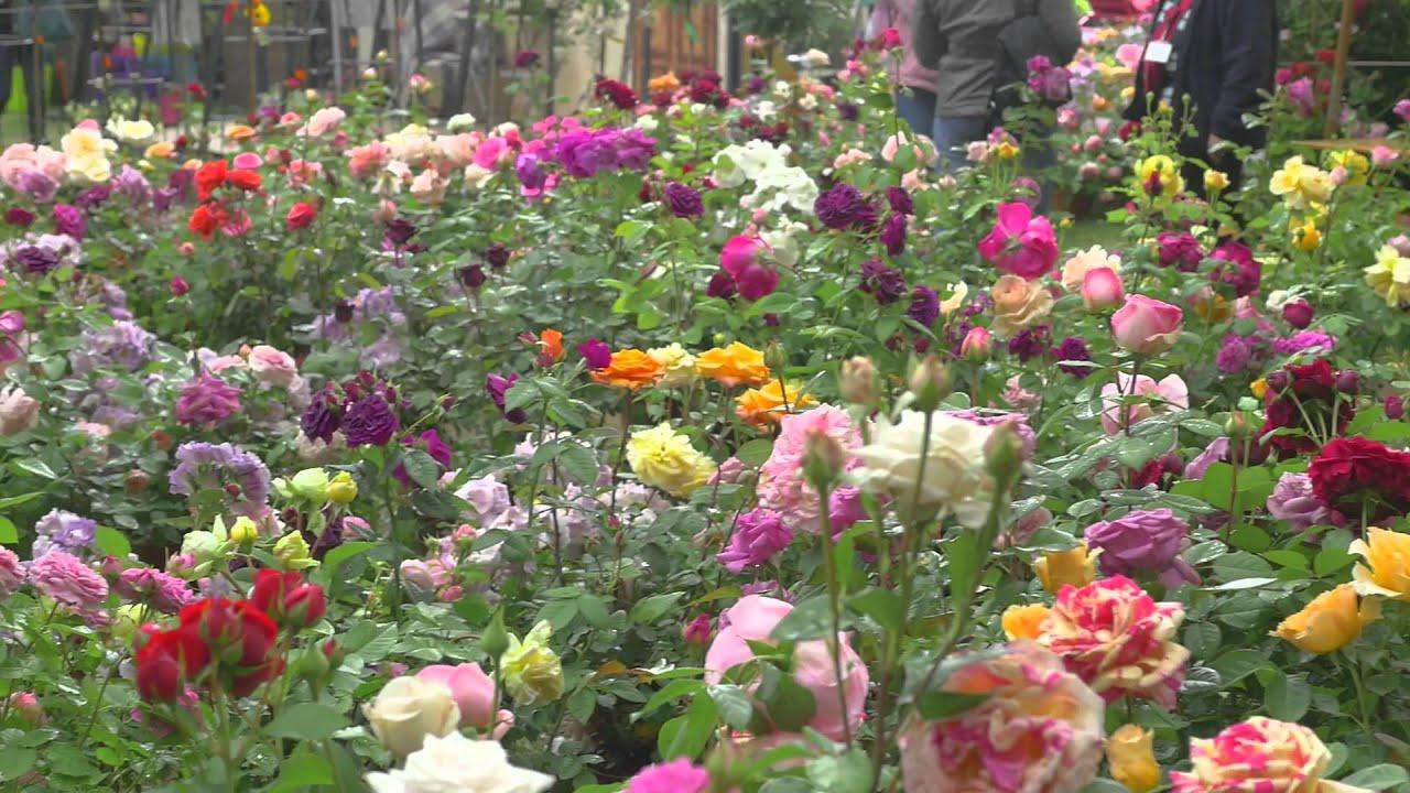 Journ es des plantes mai 2015 youtube - Journee des plantes chantilly ...