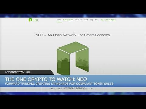 Project ICO CEO Steve Hyduchak Talks PlexCoin Scam Shutdown, Smart Contracts & $NEO