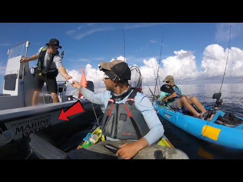 Marine Fishing License Check + Barracuda Tussle