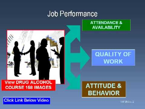 Alcohol and Drug Abuse Training: PowerPoint, Video, DVD, Online Training for Alcohol and Drug Abuse