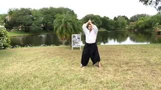 Aikido Weapons Outdoors! 3rd Kyu Bokken Bridge Techniques Cont'd