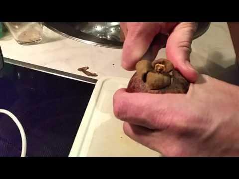 Как почистить мангустин