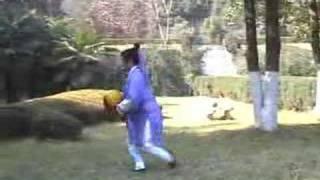 Wudang Taichi Universe ball