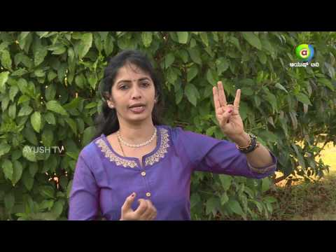 Reduce 3 Kg In  10 days| Obesity, Remove Fat | Mudra Therapy