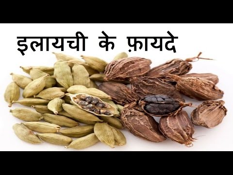 इलायची के फ़ायदे | Health benefits of Cardamom for weight loss, cough, skin, & Hair