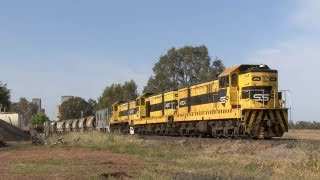 NSW Railways - SSR 49 class EMDs from Dubbo to Merrygoen: Australian Trains
