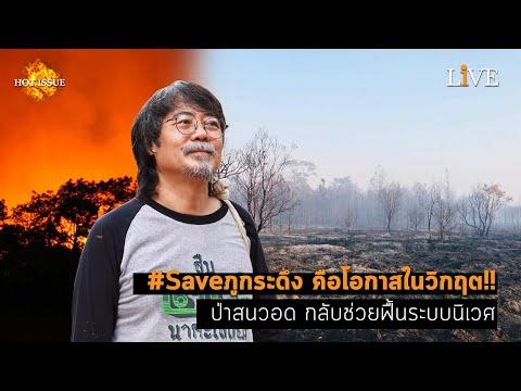 [Hot Issue] #Saveภูกระดึง คือโอกาสในวิกฤต!! ป่าสนวอด กลับช่วยฟื้นระบบนิเวศ
