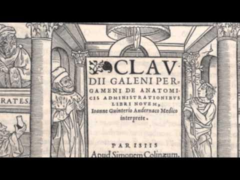 Vesalius At 500  An Exhibition At The Thomas Fisher Rare Book Library