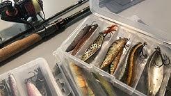 Meritaimenen kalastus - vinkit paikoista, välineistä ja vieheistä