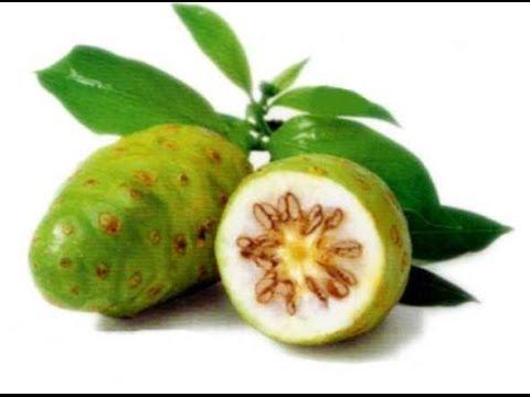 نتيجة بحث الصور عن فاكهة النوني