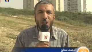 مصادرة واقتلاع 20 دنم من الزيتون في قرية المشهد