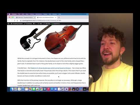 How Are Bass Guitars and Double Bass Different?