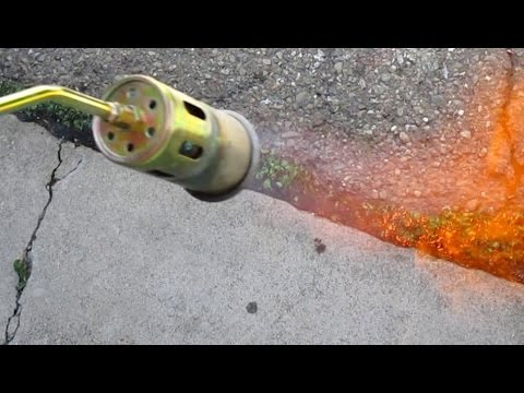 Quick & Easy Way To Eliminate Unwanted Weeds Using A Propane