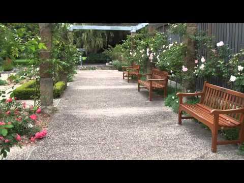 Palace Rose Garden Sydney