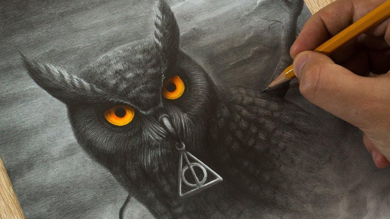 drawing owl from hogwart harry potter art youtube