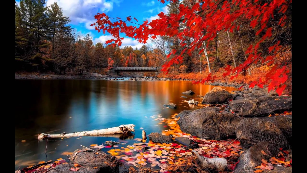 beautiful nature scenery picture - youtube