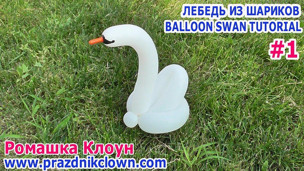 Лебеди из шаров своими руками фото 303