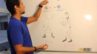 Física / Vestibular e ENEM (FS0130)