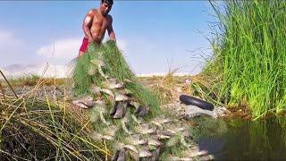 Mira lo que PESCO este HOMBRE en Lagunas PELIGROSAS | Pesca de #TILAPIAS GRANDES