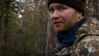 Alaskan Frontiersmen Arent the Only Predators Looking for Meat