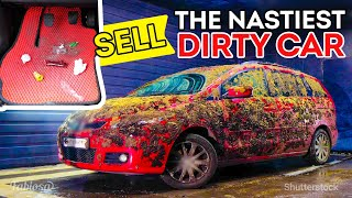 Better than after car wash! 8 car cleaning tips you must try