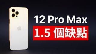 1.5個缺陷?iPhone 12 Pro Max 差點完美