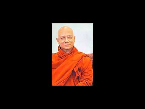 Sayadaw U Jotika - Truth Is A Beauty