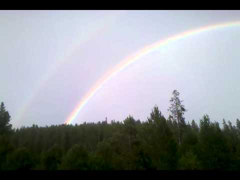 how much money did double rainbow guy make