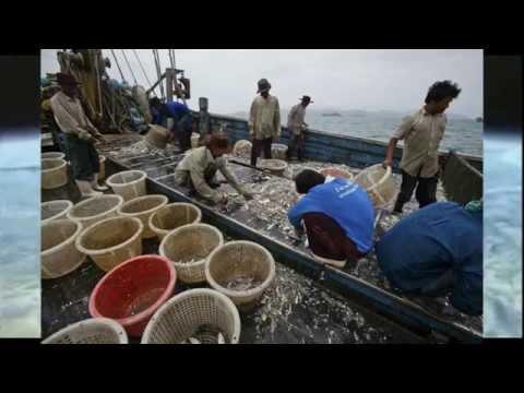 รายการท่องเที่ยวภูไท (ททท) ม.ราชภัฏกาฬสินธุ์