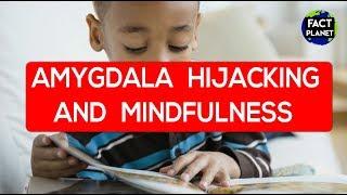 Amygdala Hijacking and Mindfulness