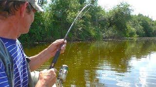 Рыбалка на щуку, 11 щук Коли Чемпиона.