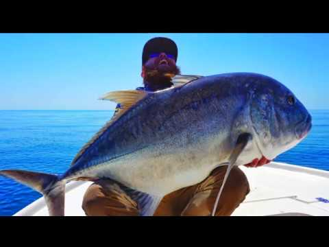 BIG GT ACTION - Jim's Fishing