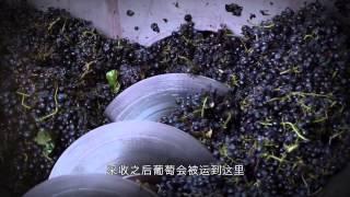葡萄酒釀製過程