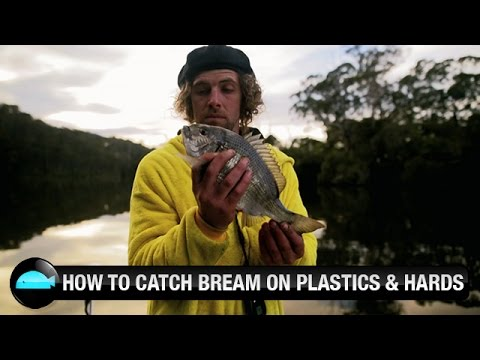Catching Bream On Soft Plastic & Hardbody Lures | We Flick Fishing Videos