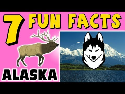 7-fun-facts-about-alaska!-facts-for-kids!-dog-sled!-moose!-denali!-learning-colors!-funny!-puppet!