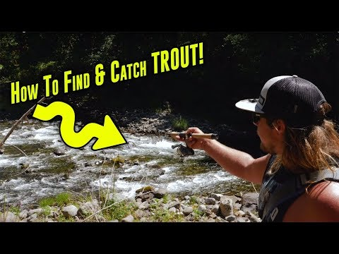 How To Catch TROUT In Creeks, Rivers, Or Streams. | Trout Fishing Tips For SUCCESS!