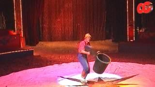 Bande Annonce CgTv Productions - Dans les coulisses du cirque Diana Moreno