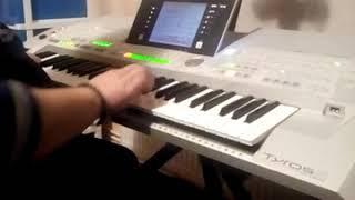 Harmonika istrumental yamaha tyros 2 miki yamaha pirot
