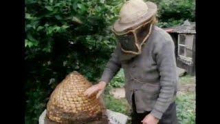 Hands: Of Bees & Bee Skeps