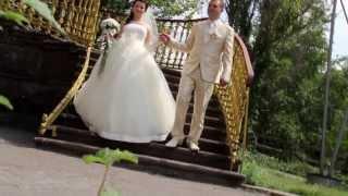 Дмитрий & Виктория - Wedding story