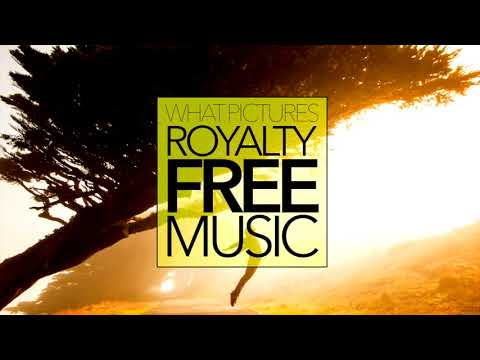 POP MUSIC Happy Funky Vlog Upbeat ROYALTY FREE Download No Copyright Content | FLY AWAY