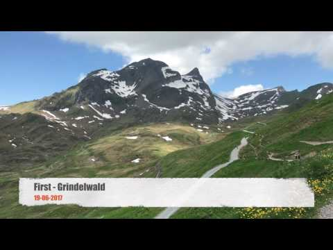 First Grindelwald 2017