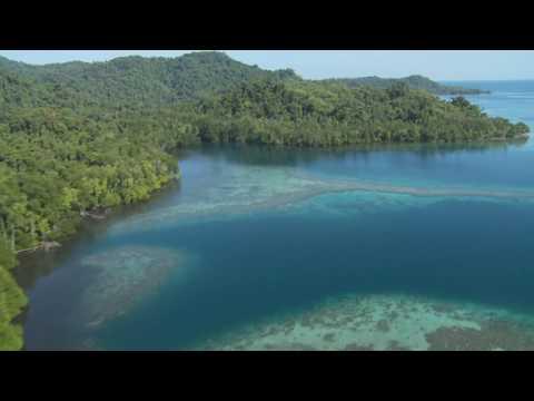 Wild New Britain: Papua New Guinea